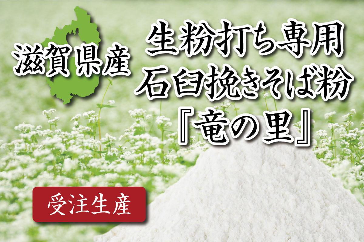 kikouchi-siga